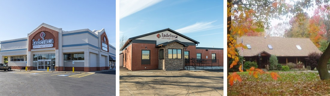 Chiropractic PA Iadeluca Chiropractic Offices